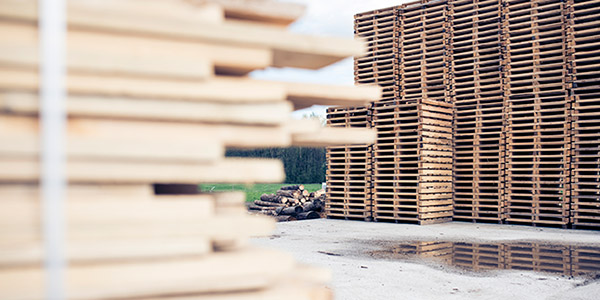 distributor empty pallets